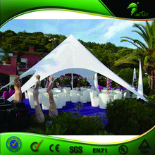 Suitable For Current Society Trends Outdoor usually gazebo/camping/car star tent/White wedding tent for sale