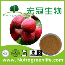 Water soluble and pure natural Hawthorn Berry Extract