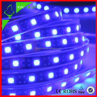 DC12V 120led/m 5050 RGBW led strip with silicon glue waterproof