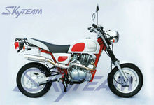 SKYTEAM EEC 50CC AND 125CC APE COBRA MOTORCYCLE