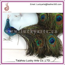 Lucky Arts Beautiful Decorative Gifts peacock feather birds with glitter