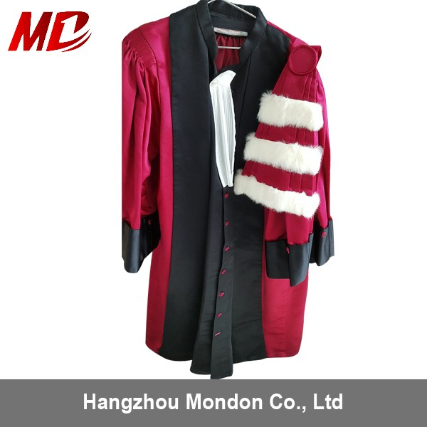 Doctoral gown in matte fabric only (1)_800.jpg