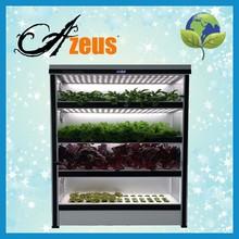 Portable Indoor Greenhouse