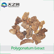 High Quality Plant Extract Polygonatum odoratum Extract from ISO Factory