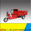 1000w Cargo Electric Tricycles With ISO Certification