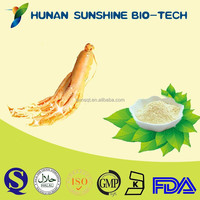 100% Pure Herbal Raw Material Korean Ginseng P.E. Powder for Immune Booster