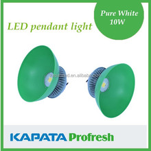 led food pendant light fruit fresh light pendant 10W, 20W, 30W