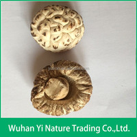 Good Quality Dried Mushroom Shiitake Distributors