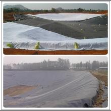 HDPE Geomembrane Pond Liner