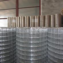 Factory price lows chicken galvanized wire mesh roll/welding mig wire roll