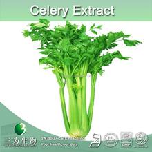 100% natural celery juice powder,celery powder,powdered celery