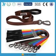 Wholesale High Quality Carabiner Pet Dog Leash 100% Nylon Carabiner Leashes