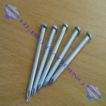 Galvanized Thumb Brand Steel Nail