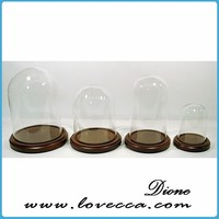 Glass Dome /Wood Base Display Case Dolls, Taxidermy, Collectibles