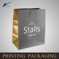 small gift Paper Bag/custom paper bag printing