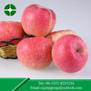 hot sale good-looking and tasty red fresh fuji apple with high quality