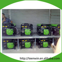 Teenwin new biogas engine power generator for biogas