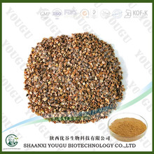 100% Grain Buckwheat Seed Extract,Tartary Buckwheat Extract, Flavonoids 20%-90% Powder