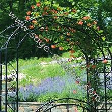 Outdoor Metal Garden Rose Arch/Garden Flower Decorative