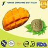 No colouring agent Organic Mango Juice Drink Powder 100% pure Nature Fruit Powder
