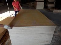 russian birch plywood varnish finish birch plywood plywood wall/birch lumber/plywood wall panel