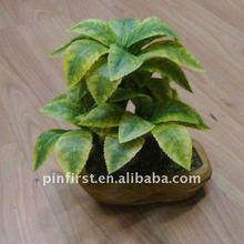 gran cantidad de nuevos 24 artesanía decorativa bonsai