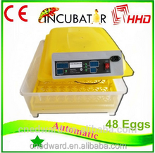 Top selling full automatic combined incubator for chicken eggs for sale EW-48