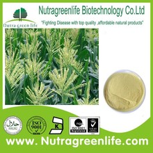 factory supply best price Corn flower bee pollen