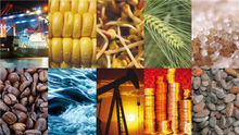 Food Grains,Agro Commodities