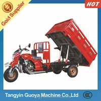 Motorized Driving Type and Hydraulic dumper 300cc adult Cargo tricycle