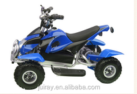 1000W Mini Electric 4 Wheeler Buggy for Kids