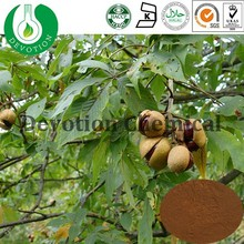 Natural Escin 20%-98% Horse Chestnut Extract