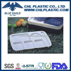 Rectangular plastic tray with division