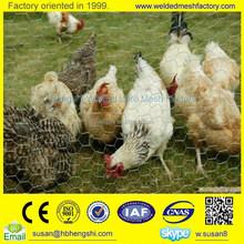(Manufacturer) Galvanized/PVC coated chicken coop hexagonal wire mesh netting