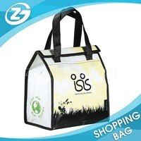 Full Color Laminated Non Woven Unique Shopping Bags