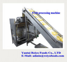 impurity removing and cleaning machine / fruits and vegetables cleaning machine