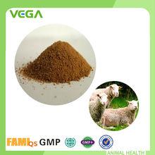 Probiótico polvo de alimentación de aves de corral ingredientes