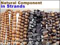 Filipinas Joyería Collares de componentes Naturales
