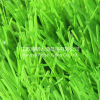 Indoor fake sport grass