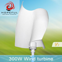 300w S type low rpm mini wind turbine VAWT 24v for sale