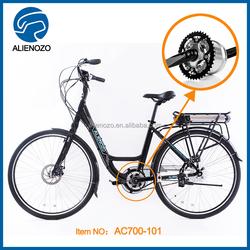 2015 electric bicycle kit 250cc motorcycles, 250w slim electric bike battery