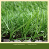 PE Artificial Plastic Grass Mat Price With Low Price