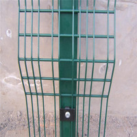2D Welded PVC Coated Double Wire Fence (Factory & Export)