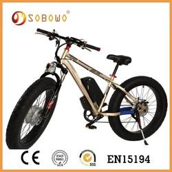 2015 250w 350w 500w sport style electric bicycle electric bike for sale