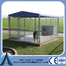 China Foldable Powdered large dog cages/ enclosures for dog / dog kennel pens factory