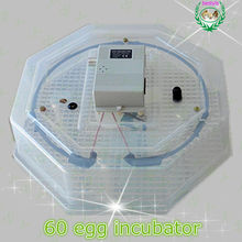 CE Certificate High Quality Laboratory JN2-60 Chicken egg incubator / 60 eggs hatcher poultry incubator machine