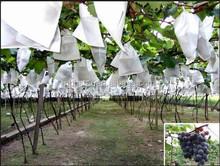Fruit wrapping paper bag paper bag fruit protection, Fruit cultivation bag, Apple bagging