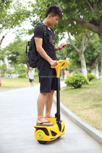 Self balancing personal transporter,scooter electric solar electric vehicle