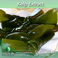 Factory Supply Bladderwrack Seaweed Kelp Extract 10:1 20:1,Seaweed Powder , Fucus Vesiculosus Powder