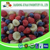 Frozen Mixed Fruits,IQF Fruits,Frozen Fruits